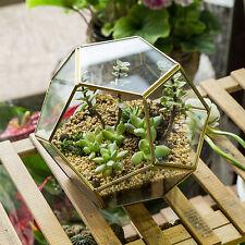 Brass Ball Shape Glass Geometric Terrarium Plant Planter Pot Lamp Candle Holder