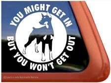 You Might Get In, But. |Cropped Doberman Pinscher Dog Window Decal Sticker