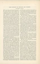 1890 Geology of Chicago Article Illinois History Science Research Geological