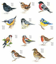 Bird Variety Select Type & Size Waterslide Ceramic Decals Bx