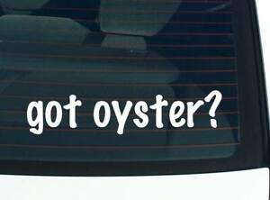 got oyster? ANIMAL OYSTERS FUNNY CAR DECAL BUMPER STICKER WALL