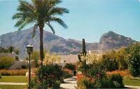 Chrome Postcard AZ I422 Phoenix Camelback Inn Mountain Flowers Palm Saguaro
