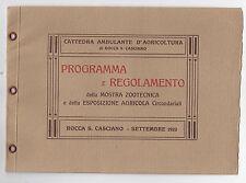 P953-ROCCA SAN CASCIANO-MOSTRA ZOOTECNICA 1923