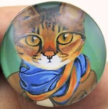 cats / glass in alloy setting, 25mm Cat lapel brooch pin badge Cool for