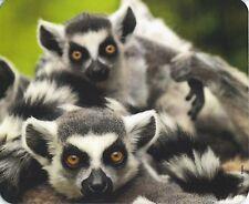 Mauspad Edition Colibri: Katta - Familie - Lemuren