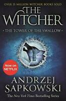 The Tower of the Swallow: Witcher 4 – Now a major Netflix show (The Witcher) by