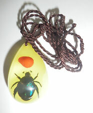 Insect Necklace Blue Cockchafer Beetle with Lucky Red Seed  YD07 Glow