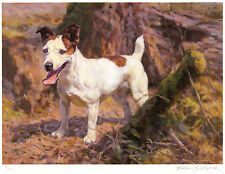 JACK RUSSELL TERRIER WORKING HUNT DOG ART LIMITED EDITION PRINT by Fred Haycock