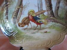 Grande assiette plat Limoges décor peint couple de faisans dorés oiseau gibier