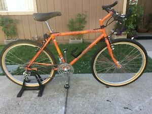 1988 Vintage MTB Mountain Goat Trench Goat Ritchey Phil Wood Salsa Sweet! Rare!