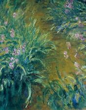 Claude Monet•IRIS Flower Garden Impressionism Poster•24x32 Art Print
