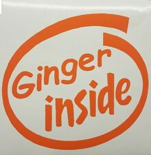 Ginger INSIDE funny sticker graphic vinyl car van decal