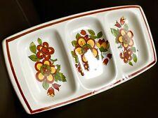 "Rare Vintage (1970s) Palissy Casual Tableware 10""x5"" (26cmx13cm) Ironstone Dish"