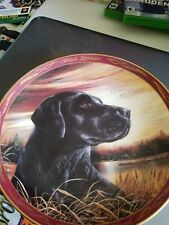 royal doulton sunset watch black labrador plate