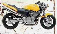 Honda CB600F hornet 2004 aged vintage signe A3 grand rétro