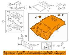 AUDI OEM 12-18 A6 Quattro Interior-Roof-Headliner 4G5867506MHF6