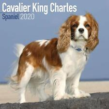 Cavalier King Charles Spaniel 2020 Official Square Wall Calendar