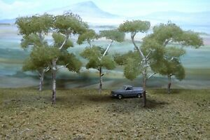 """AUSTRALIAN  MODEL  GUM TREES 100 mm. X 5."""" HAND CRAFTED BY RON """""""