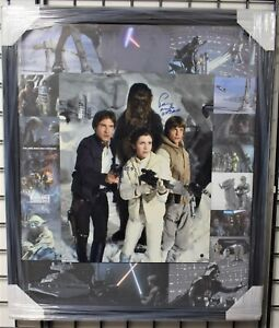 Peter Mayhew Chewbacca / Signed & Framed Star Wars Collage (Large) - Steiner COA