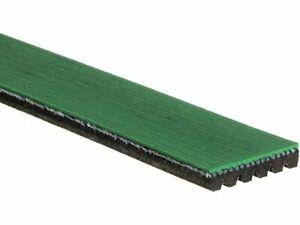 For 1999-2003 Workhorse P32 Multi Rib Belt Gates 92581GQ 2000 2001 2002