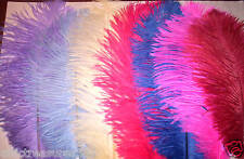 OSTRICH PLUME FEATHER PENS~U PICK COLOR~PLEASE READ ALL THE DESCRIPTION