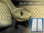 2 Ivory Snake Juma .250' 1/4' Scales 2' x 6' - Knife Handle Material