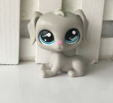 Littlest Pet Shop LPS Toys Rare Children gift    wK + 91