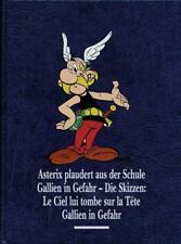 Asterix Gesamtausgabe 12 von Albert Uderzo und René Goscinny (2016, Gebundene Ausgabe)
