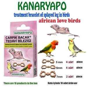 Cockatiel Lovebird Splayed Leg Treatment Bracelet Bird Bands Leg Rings