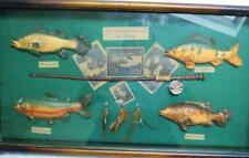 Vintage Fly Fishig Shadow Box