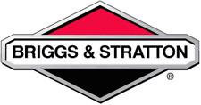 Genuine Briggs & Stratton 492482 carburetor gasket set