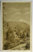 Truckee River Lake Tahoe California 1929 RPPC Postcard Pine Trees Real Photo