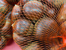 IMPORTED JUMBO CHESTNUTS.  ***BUY MORE, SAVE MORE***