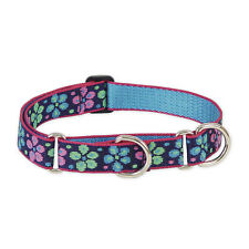 Lupine 1-inch Flower Power Martingale Combo Collar for Large Dogs 15 to