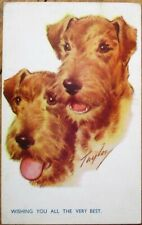 Fox Wire Hair Terrier Dog 1944 Postcard - Taylor/Artist-Signed
