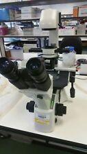 Motic AE31 trinocular microscopio de cultivo de tejidos con fase, en Impecable Estado