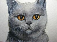 Watercolor Painting Gray Cat Kitten Home Pet ACEO Art
