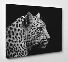 Leopard Canvas Large Wall Art black and white cute cat wild safari