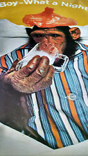 1974 Boy What Night drunk Chimp with a hangover vintage new  NOS poster HBX11