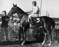 1961 Great American Racehorse KELSO Glossy 8x10 Photo Print Belmont Race Winner