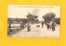 PALAVAS (34) Arrivée du TRAIN animée début 1900