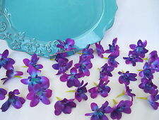 20 Silk Teal Island Orchid Heads Dendrobium Orchids Galaxy Signapore
