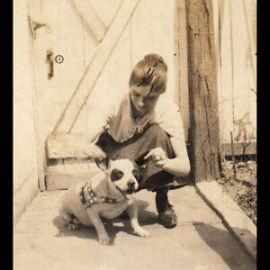 WOMAN PLAYS w EARS of SQUATTY PIT BULL DOG MIX in HARNESS ~ 1920s VINTAGE PHOTO