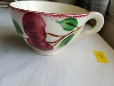 Blue Ridge Southern Potteries Colonial Crab Apple 3773 Coffee Cup
