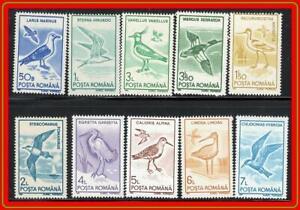 ROMANIA 1991 BIRDS MNH