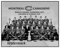 NHL 1953 Montreal Canadiens Stanley Cup Champions Team Picture 8 X 10 Photo