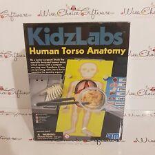 Anatomía Torso Humano 4 M Kidz Labs Ciencia Kit Nuevo Libre P&P