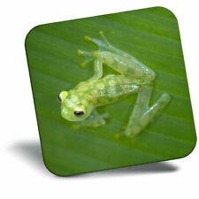 Awesome Fridge Magnet - Glass Frog Jungle Frogs Green Cool Gift #3302