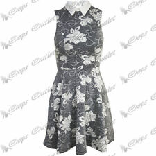 Collared Skater Floral Plus Size Dresses for Women