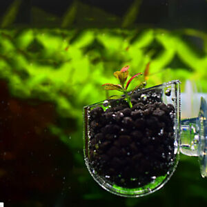 Aquarium decoration Plants Fish Tank Live Plant Cup Hanging aquarium accessories